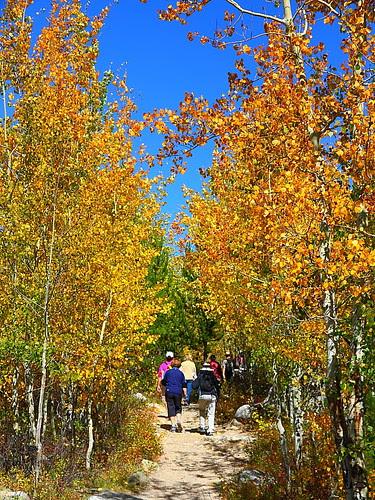 IMG_8070 Taggart Lake Trail, Grand Teton National Park