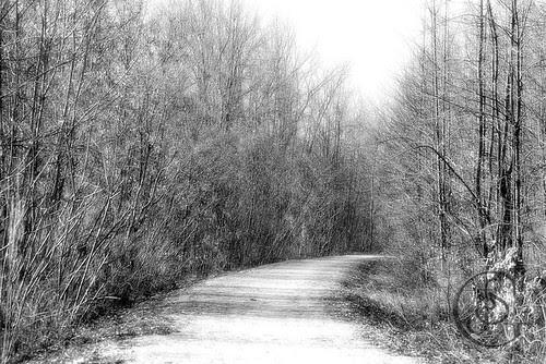 Orillia - Curved Trail