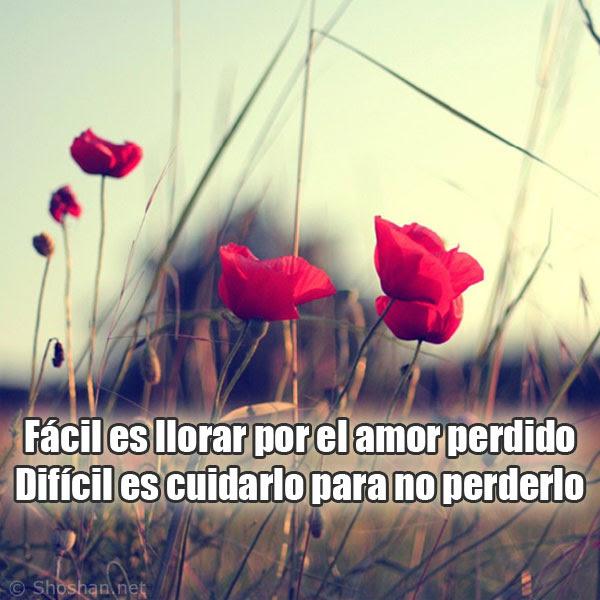 Imagen Para Facebook Con Frases De Amor Facil Es Llorar Por El Amor