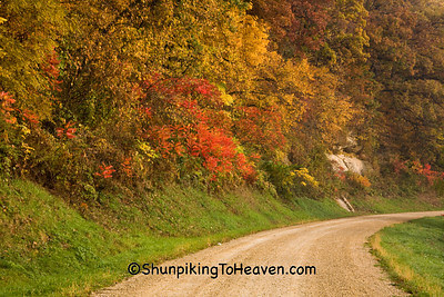 Autumn Gravel Road Scene, Richland County, Wisconsin