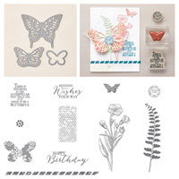 Butterfly Basics Wood Bundle