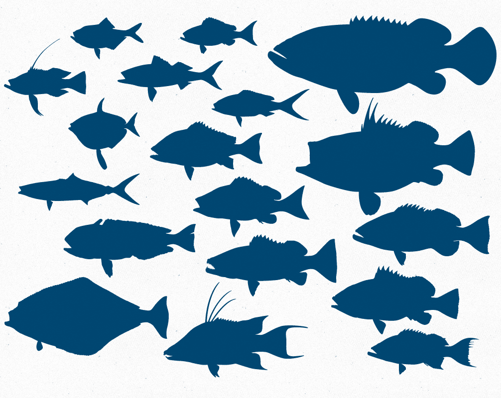 Download Free Fish Silhouette Svg Download Free Fish Silhouette Svg Png Images Free Cliparts On Clipart Library