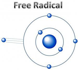 radikal bebas antioksidan