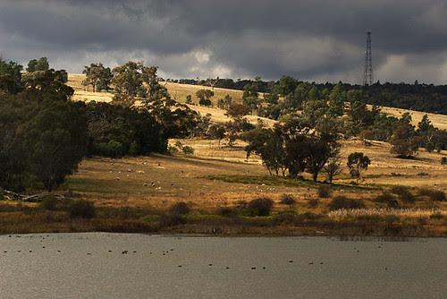 Bogolong Dam, Grenfell, New South Wales, Australia IMG_6545_Grenfell