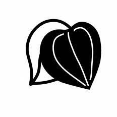 ほおずきシルエット イラストの無料ダウンロードサイトシルエットac