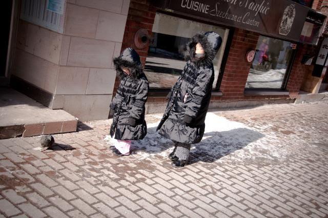 """Mon Feb 20,2012, """"Hey look Sis....a pigeon...."""""""