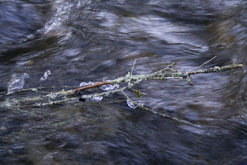 ice in the creek