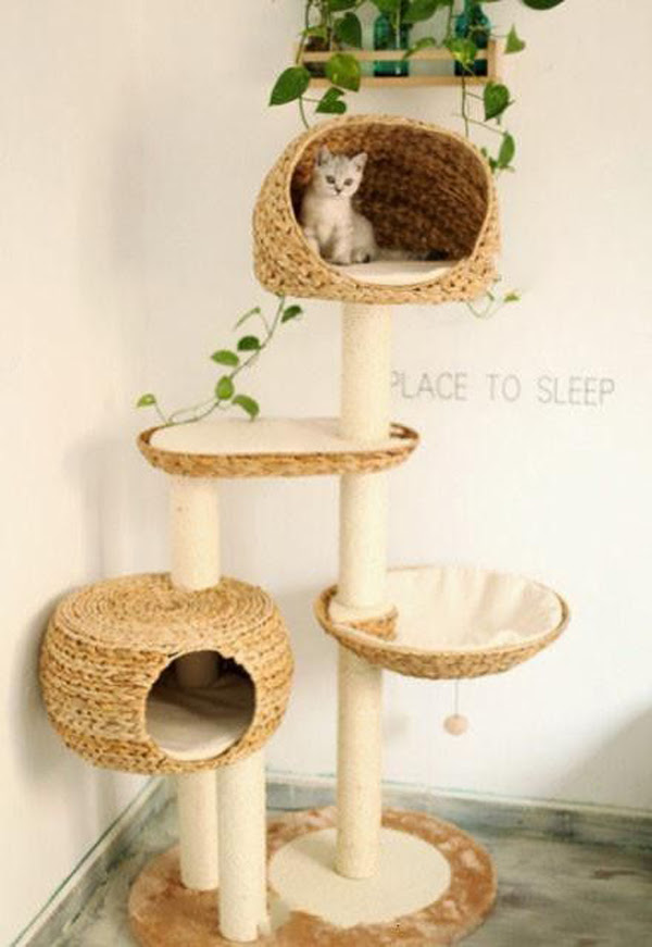 cat tree house with hanging plants