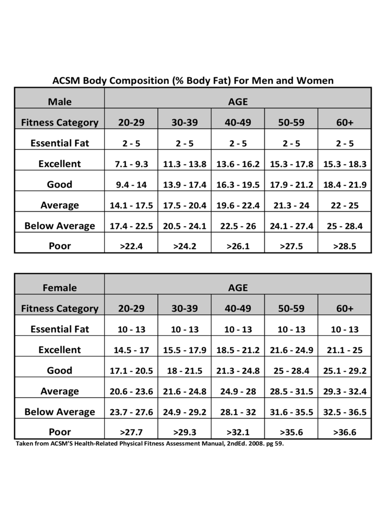 body fat percentage chart excel