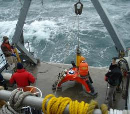 Assessing the environmental effects of tidal turbines
