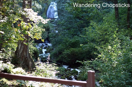 11 Chasing Waterfalls - Columbia River Gorge - Oregon 8