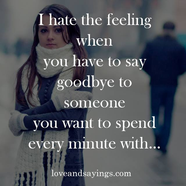 I Hate Saying Goodbye Quotes