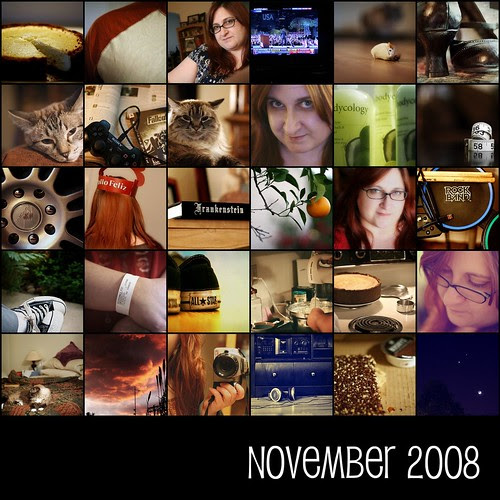 November 2008  [project 365]