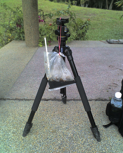 Things i bring for a macro outing