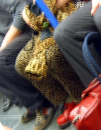 Leopard Skin Frenzy