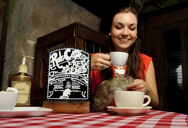 """Resultado de imagen para """"Rat Cafe"""""""