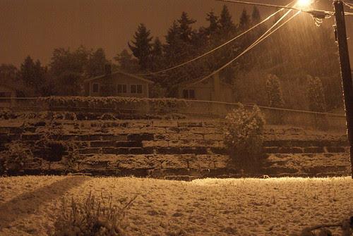 winter wonderland (ha)