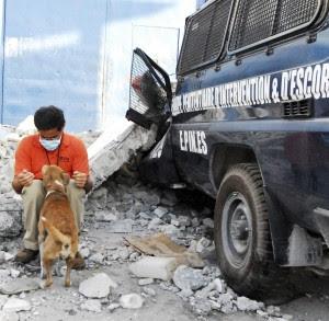Gerardo Huertas, Director de Manejo de Desastres para las Américas de la WSPA, cuenta con más de 30 años de experiencia en la atención de animales antes, durante y después de una situación de crisis. Aquí como parte de las operaciones de ayuda a personas y animales afectados por el terremoto de Haití, en el 2010. (Foto cortesía ©WSPA/IFAW/Tomas Stargardter)