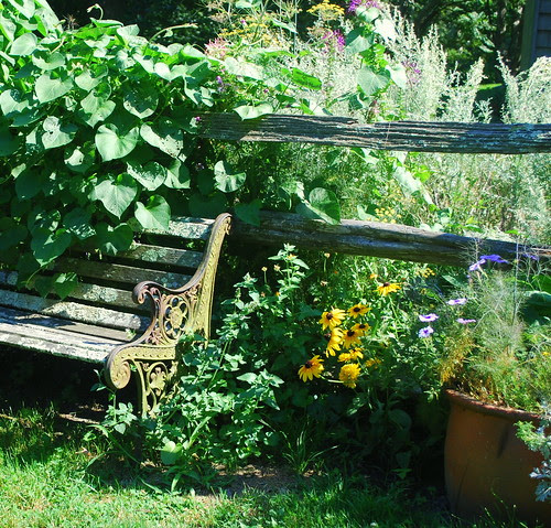 Watsons Farm bench