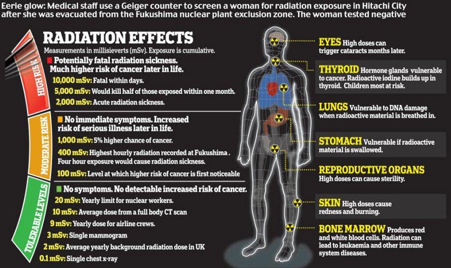 Research: 5 Smartphones With Harmful Radiation Levels