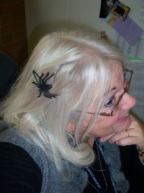 spiders nest!