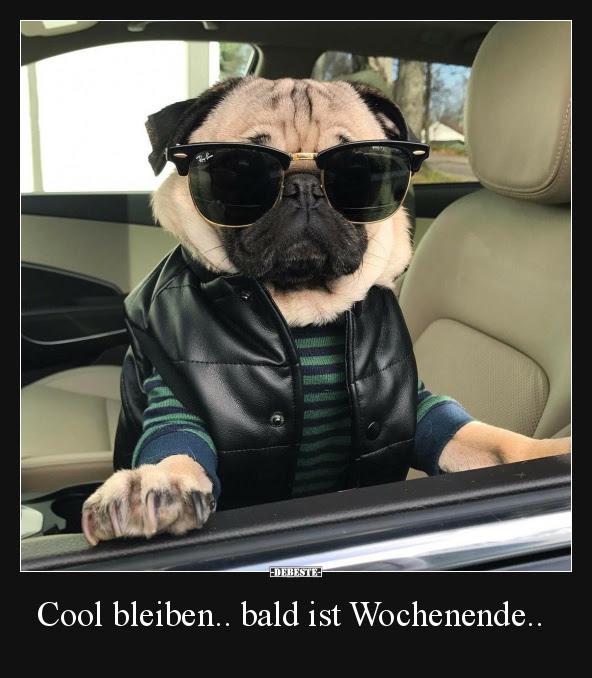 Cool Bleiben Bald Ist Wochenende Lustige Bilder Sprüche