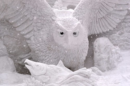 Snow Owl by Ashurii Aren