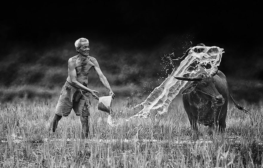 Foto Kehidupan Sehari-hari di Pedesaan 4