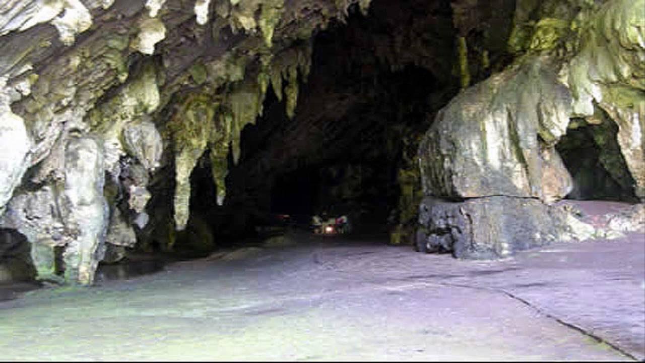 Resultado de imagen para cueva del guácharo
