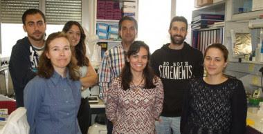 <p>Isidro Sánchez y su equipo./ CIC</p>