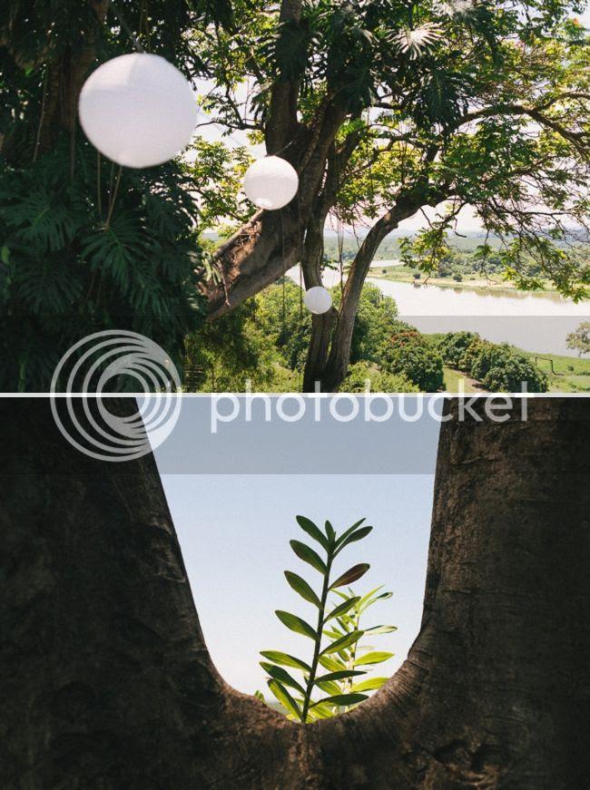 http://i892.photobucket.com/albums/ac125/lovemademedoit/welovepictures%20blog/BushWedding_Malelane_009.jpg?t=1355997603