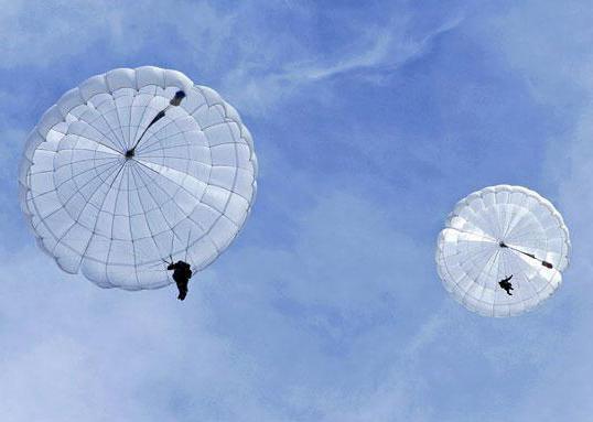 сколько строп у парашюта десантника д 10