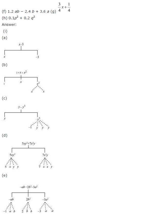 NCERT Solutions for Class 7 Maths Chapter 12 Algebraic Expressions Exercise 12.1