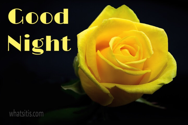 Best Heart Touching Good Night Messages For Friends With Pictures