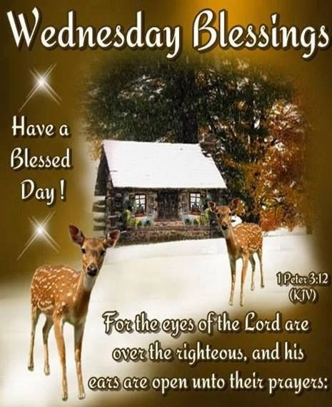 Wednesday Blessings Have A Blessed Day Religious Image Quote