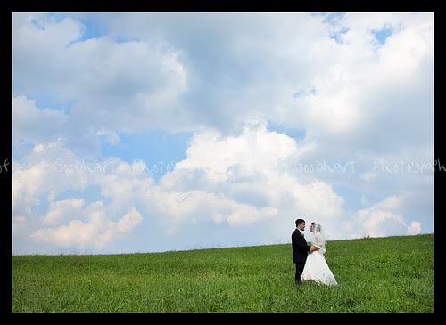 Wedding-1-2 (2) copy web