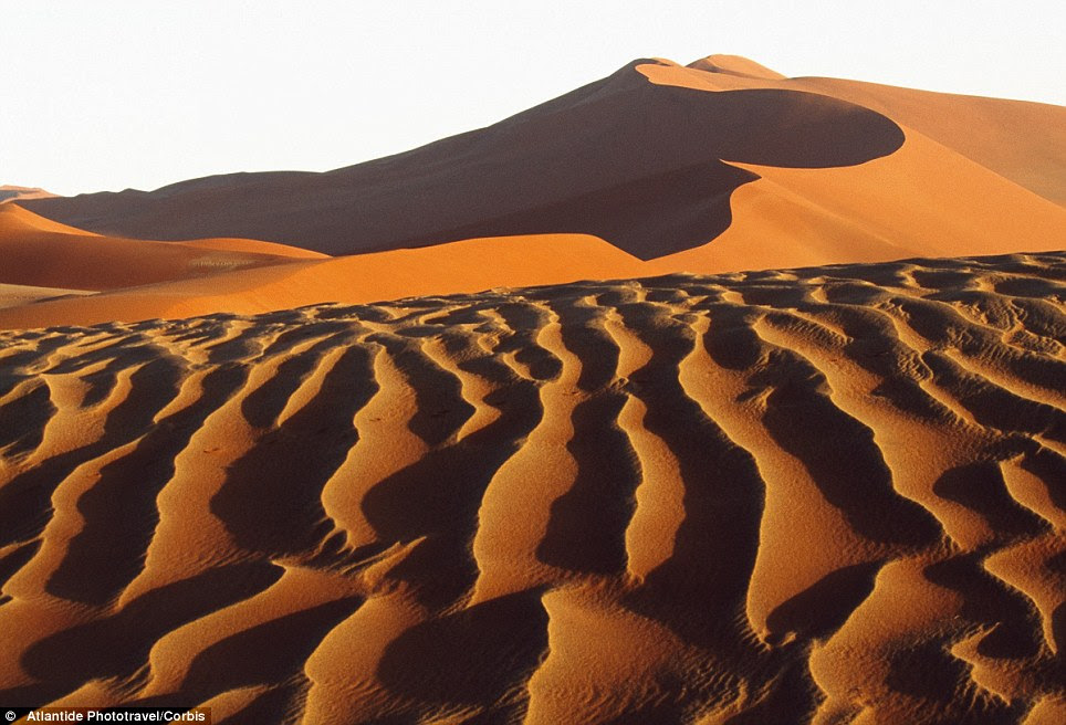 Desert and sand dunes of the Namib-Naukluft National Park in Namibia