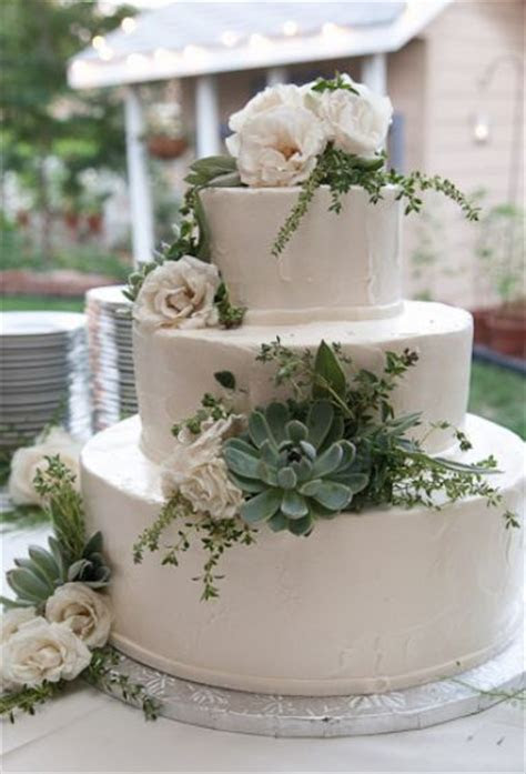 Tri tier round white wedding cake with succulents and