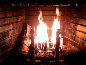Wood-burning fireplace with burning log.