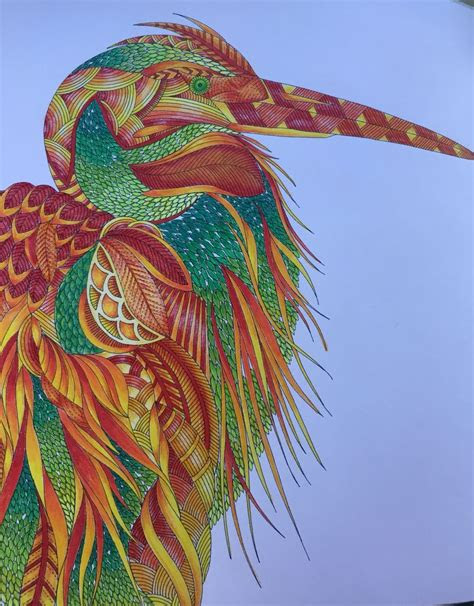 stork  millie marotta tropical wonderland coloured
