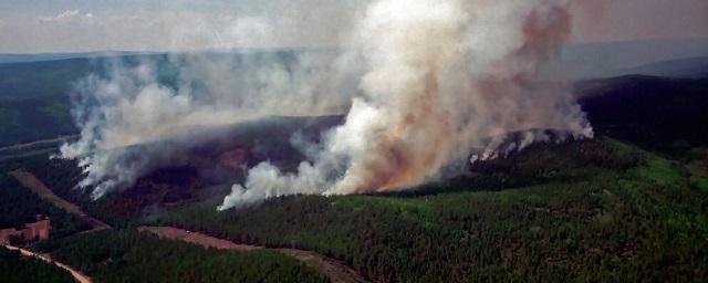 Субъекты ДФО получат в два раза больше денег на борьбу с лесными пожарами