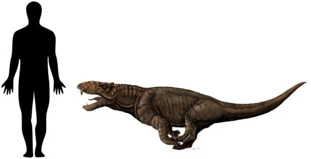 Crânio de animal que viveu há mais de 260 milhões de anos no RS vai ser apresentado em museu Voltaire Neto/divulgação