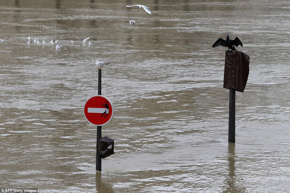 Police fined people who took a canoe Saturday into the Seine in central Paris, and sternly ordered others in a tweet against such actions, calling them 'totally irresponsible.' Pictured: A flooded street in Paris
