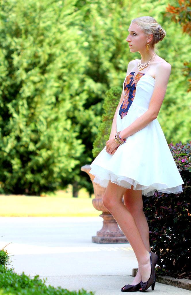 Swan Princess3