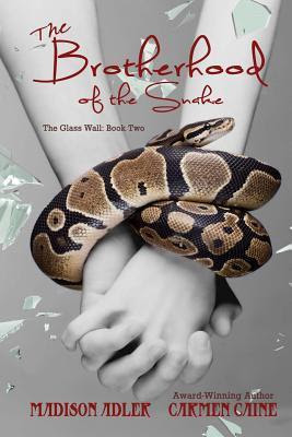 The Brotherhood of the Snake (Return of the Ancients, #2)