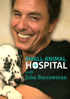Small Animal Hospital - Season 1