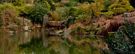 Kubota Garden Winter