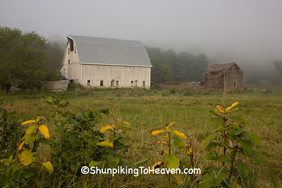 Farm on Foggy Morning, Richland County, Wisconsin