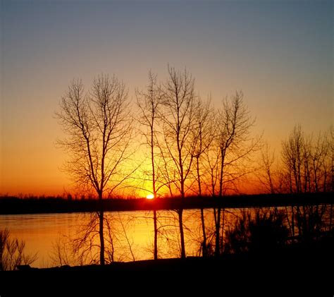 sunset  winter trees reflected  river background