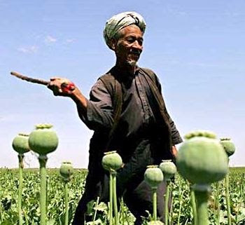 http://www.salem-news.com/stimg/january132008/opium_afghan_man_2.jpg